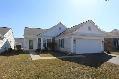 Huntley Single Family Home New: 11876 Borhart Drive