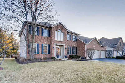 Naperville Single Family Home New: 3539 Sweet Maggie Lane