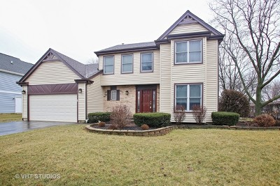 Schaumburg Single Family Home New: 2317 Featherstone Court