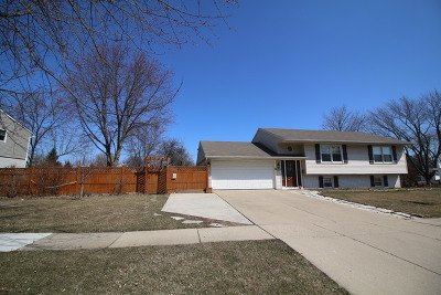 Streamwood Single Family Home Contingent: 101 David Drive