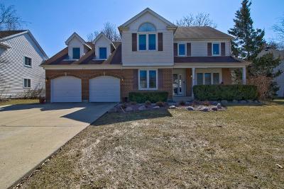 Buffalo Grove Single Family Home For Sale: 59 Chestnut Terrace