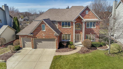 Naperville Single Family Home New: 2663 Salix Circle