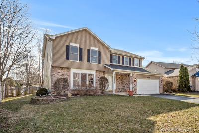 Naperville Single Family Home New: 1408 Baldwin Drive