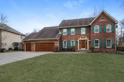 Naperville Single Family Home New: 2684 Fox River Lane