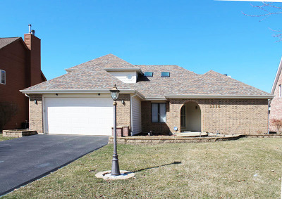 Naperville Single Family Home New: 2058 Bunker Circle