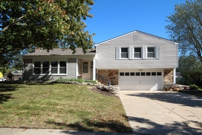 Schaumburg Single Family Home For Sale: 319 Compton Lane