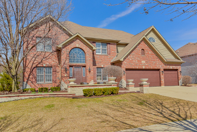 Naperville IL Single Family Home New: $619,900