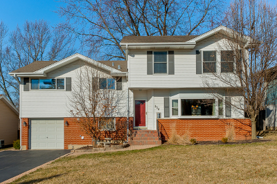 Wheaton IL Single Family Home New: $385,000