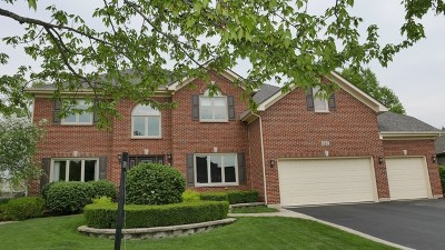 Naperville Single Family Home New: 327 Avena Circle