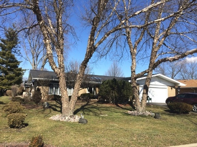 Palos Heights Single Family Home For Sale: 6238 West 129th Place