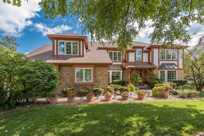 Wheaton Single Family Home For Sale: 879 Stillwell Court