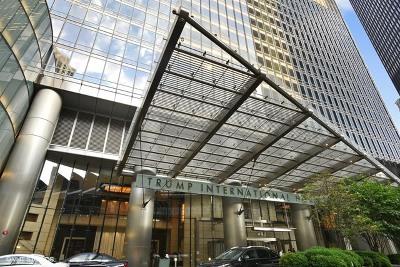 Chicago IL Condo/Townhouse New: $1,600,000