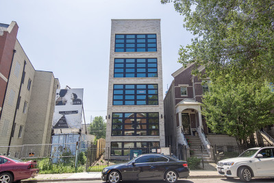 Chicago Condo/Townhouse New: 1221 East 46th Street #1