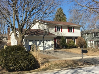 Naperville Single Family Home New