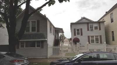 Chicago IL Multi Family Home New: $290,000