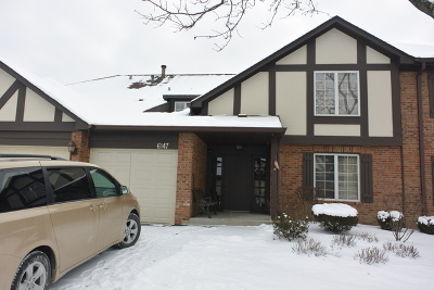 Willowbrook Condo/Townhouse For Sale: 6147 Willowhill Road #C