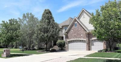 Plainfield Single Family Home For Sale: 24822 Petit Court