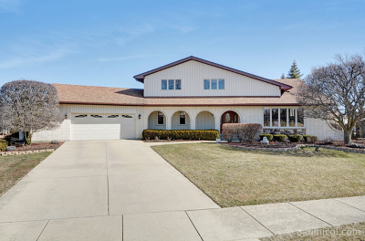 Palos Park Single Family Home For Sale: 10014 West Lakeview Court