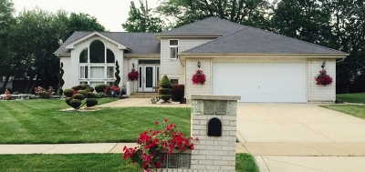 Matteson Single Family Home For Sale: 5942 Kathryn Lane