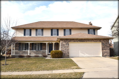Winfield Single Family Home For Sale: 27w214 Waterford Drive