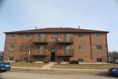 Dekalb Multi Family Home For Sale: 1029 Ridge Drive