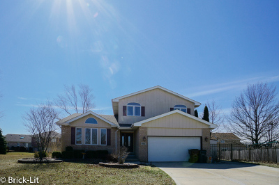 Mokena Single Family Home For Sale: 9841 Sussex Court
