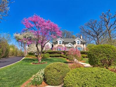 Palos Park Single Family Home For Sale: 12325 South Seminole Road