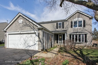 Lake Zurich Single Family Home For Sale: 702 Edelweiss Drive