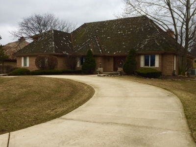 Oak Brook Single Family Home For Sale: 317 Trinity Lane
