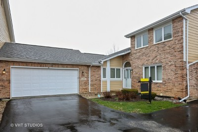 Orland Park Condo/Townhouse New: 11258 Lakefield Drive