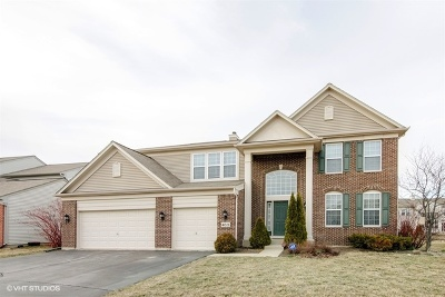Carpentersville Single Family Home For Sale: 4015 Stratford Lane