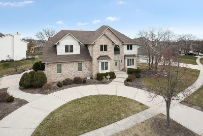 Channahon Single Family Home For Sale: 26408 West Highland Drive