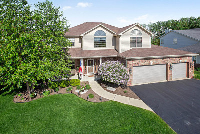 Lockport Single Family Home Price Change: 16545 Case Drive
