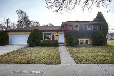 Wood Dale Single Family Home For Sale: 471 Forest Preserve Drive