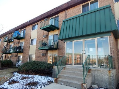 Roselle Condo/Townhouse For Sale: 240 Springhill Drive #306