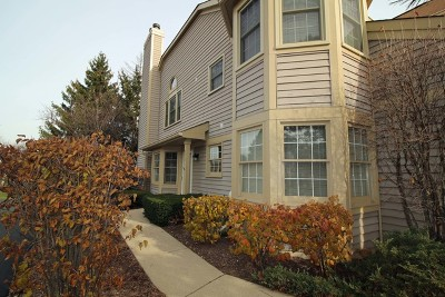 Arlington Heights Condo/Townhouse For Sale: 3272 North Carriageway Drive