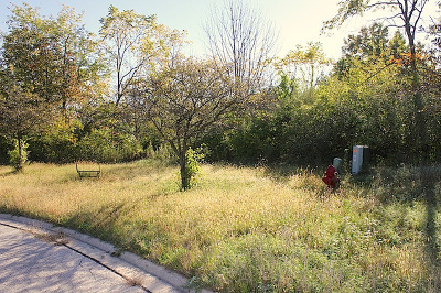 Carpentersville Residential Lots & Land For Sale: 3104 Hawthorn Hill Lane