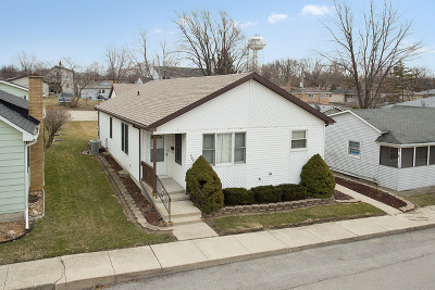 Lemont Single Family Home For Sale: 707 Ledochowski Street