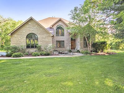 Johnsburg Single Family Home For Sale: 1129 Ringwood Road