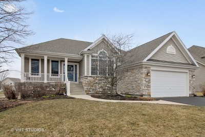 Elburn Single Family Home For Sale: 924 Independence Avenue
