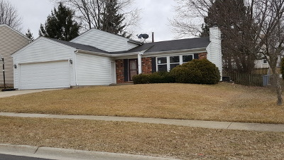 Schaumburg Single Family Home Contingent: 2115 Briar Hill Drive