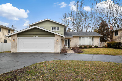 Downers Grove Single Family Home For Sale: 1804 Prairie Avenue