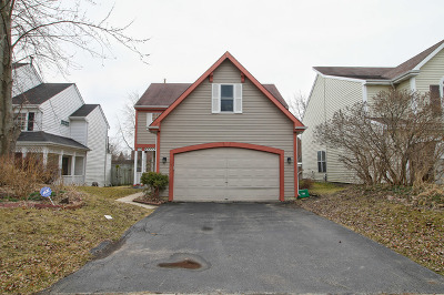 Libertyville Single Family Home For Sale: 16953 West Serranda Drive