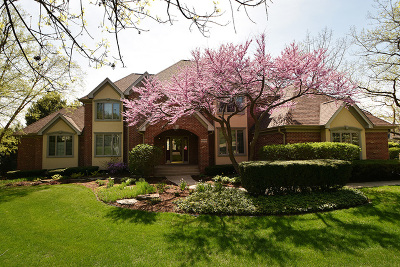 Orland Park Single Family Home For Sale: 10849 Crystal Springs Lane