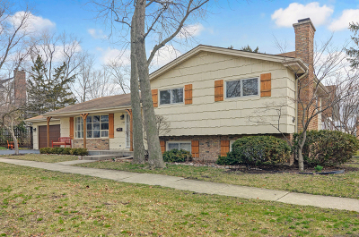 Hinsdale Single Family Home For Sale: 745 Town Place