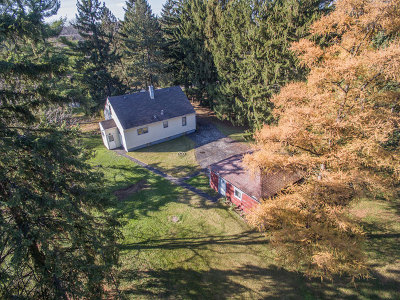Burr Ridge Single Family Home For Sale: 8869 Elm Avenue