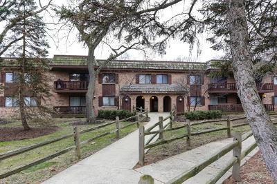 Downers Grove Condo/Townhouse For Sale: 7930 Woodglen Lane #106