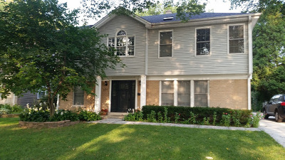 Elmhurst Single Family Home For Sale: 151 South Fairview Avenue