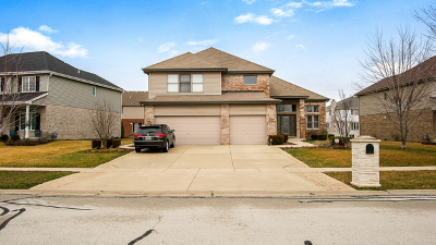 Woodridge Single Family Home For Sale: 9241 Keswick Drive