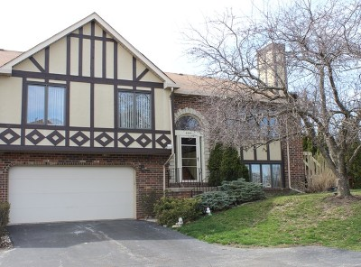 Tinley Park Condo/Townhouse New: 9240 Drummond Drive #9240